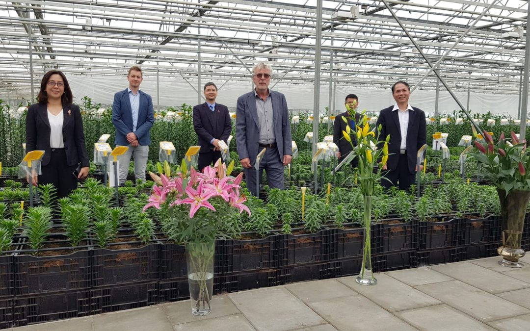Vietnamese ambassador visits test greenhouse of Onings Holland