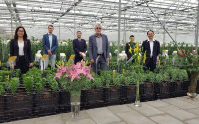 Vietnamese ambassadeur op bezoek in de proefkas van Onings Holland