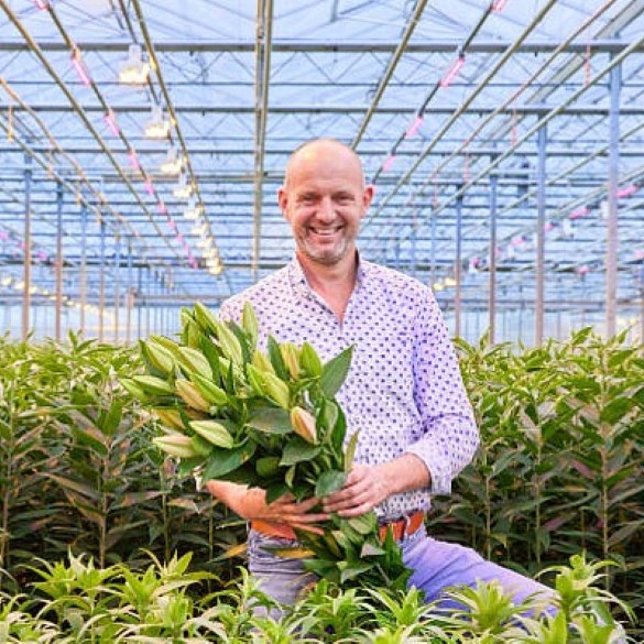 Bakker first to grow lilies under LED